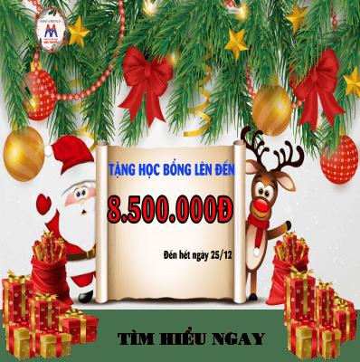 Học bổng Giáng Sinh